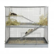 Chinchilla, 2 Tier, Rat, Rodent Cage
