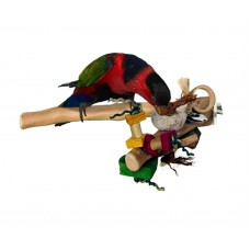 Java Bird Perch With Toy