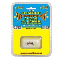 Fish R Fun Acrylic Floating Algae Magnet Mini