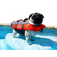 K9 Pursuits Dog Life Jacket, High Visibility Easy Grab Float Coat XSmall