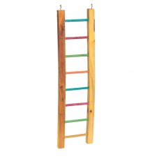 Lazy Bones Parrot Ladder Multi Coloured 61cm
