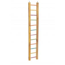 Lazy Bones Parrot Ladder Multi Coloured 92cm