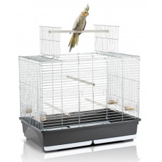 Open Top Bird Cage